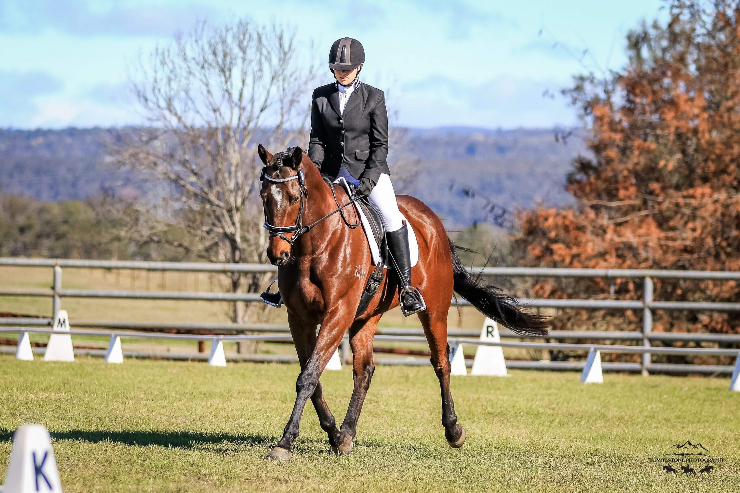 Razz Dazzles In Life After Racing