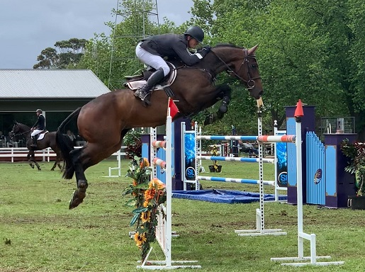 Lucky Showjumper The Only Ex-Racehorse Competing In World Cup