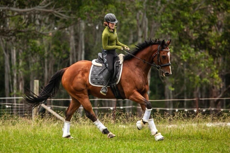 Golden Horse Healing Hannah's Broken Heart