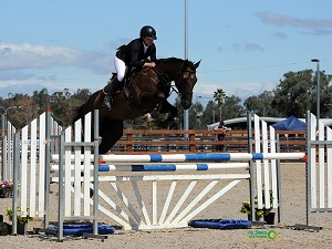 Elissar's Love Of Thoroughbreds Runs In The Family