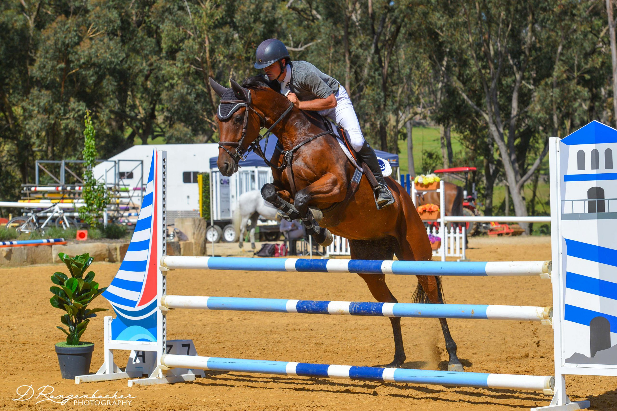 OAR Propelling Retired Racehorses Into New Careers